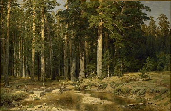 Ivan Shishkin. The Ship Grove